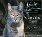 English House A Cat Called Scamp