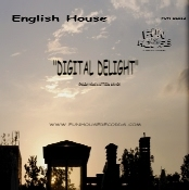 English House DIGITAL DELIGHT